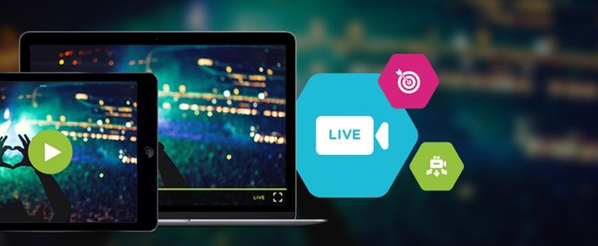 Maxwell Streaming - Live Stream Doha | Doha Live News